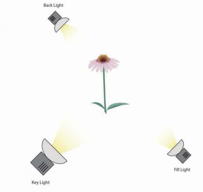 DSLR - Illustration - Three Point Lighting